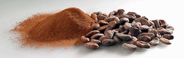 cacao e caffè