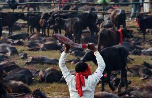 Festa induista