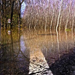 fiume po piena (11)
