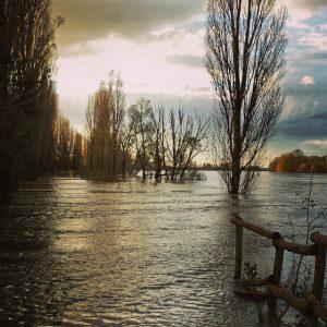 fiume po piena (2)