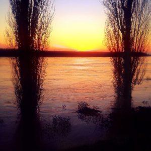 fiume po piena (4)