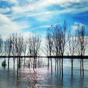 fiumepo04