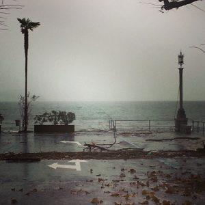 lago maggiore 14