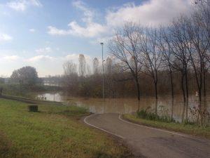 piena del fiume po (9)