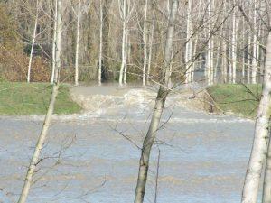 piena fiume po (1)