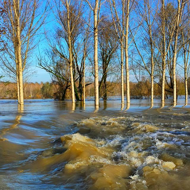 Piena del po: il livello del fiume non smette di salire, notte di