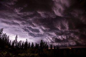 storm shelf