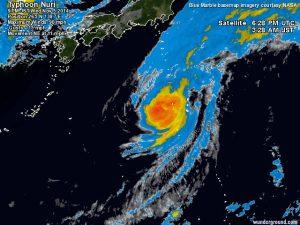 tifone nuri