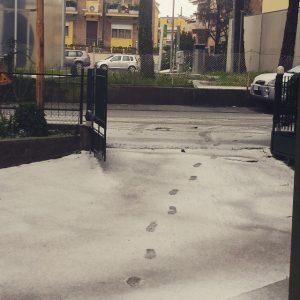 neve pesaro3