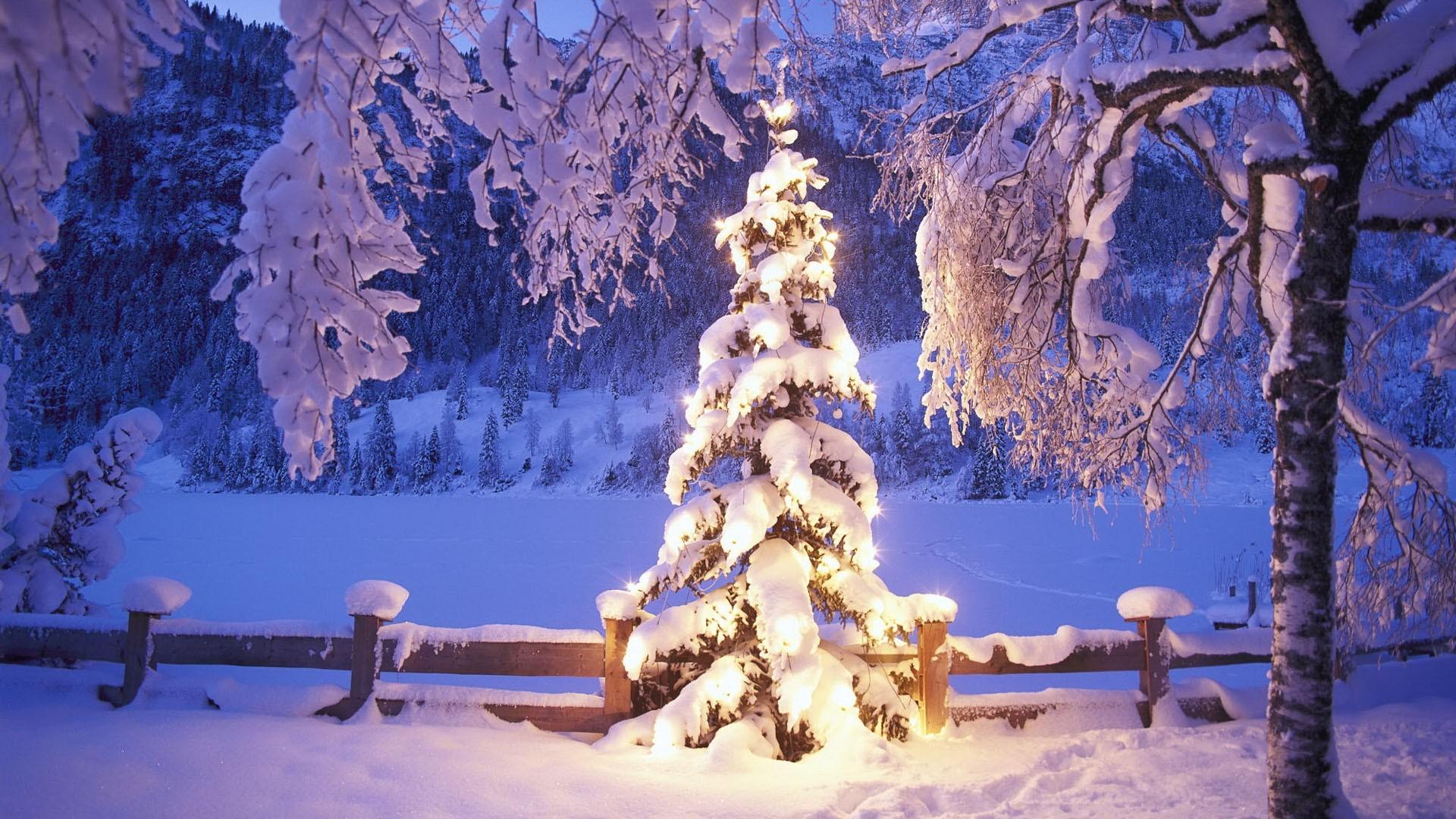 Natale Giorni Di Febbre Da Neve Attesa Una Spolverata Sulle Alpi