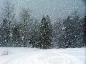 snowstorm neve