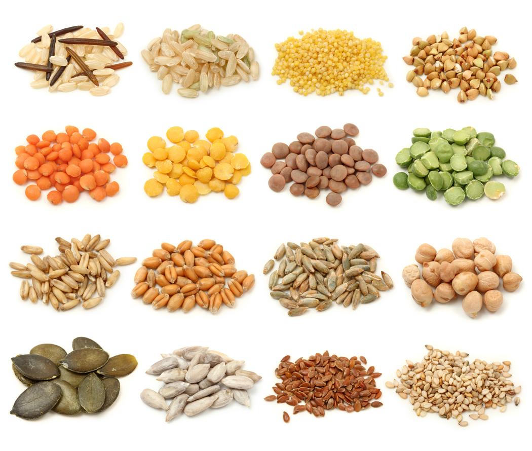 dieta cop Bases de la dieta | Dieta Seignalet