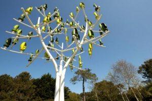 WIND TREE 1