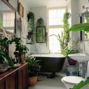 Arredare casa con il feng shui - Piante in bagno ...