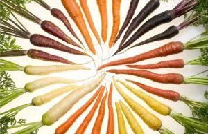 carote-nere_3