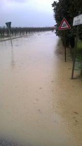 emilia romagna pioggia 03