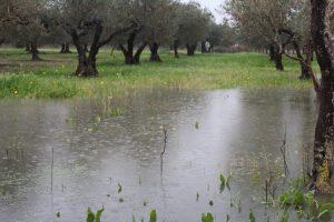 maltempo sicilia (4)