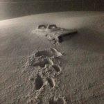 Neve Record Marzo 2015 Capracotta Agnone Pescocostanzo (29)