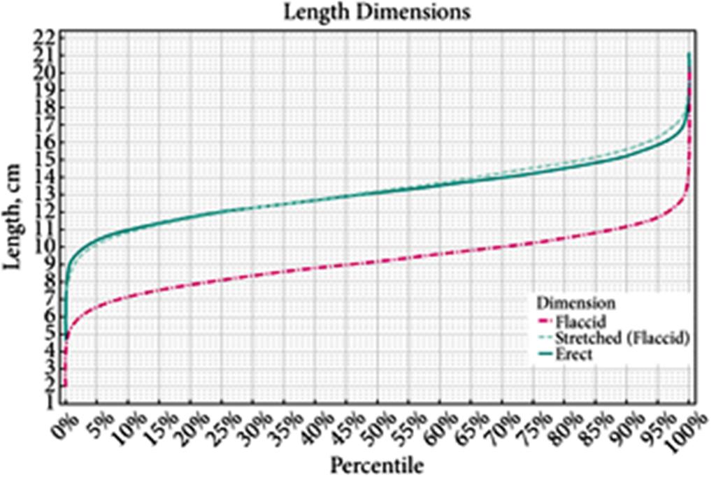 lunghezza media del pene degli italiani