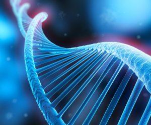 Memoria-basata-sul-DNA-in-grado-di-registrare-input-multipli-da-circuiti-di-geni-ingegnerizzati
