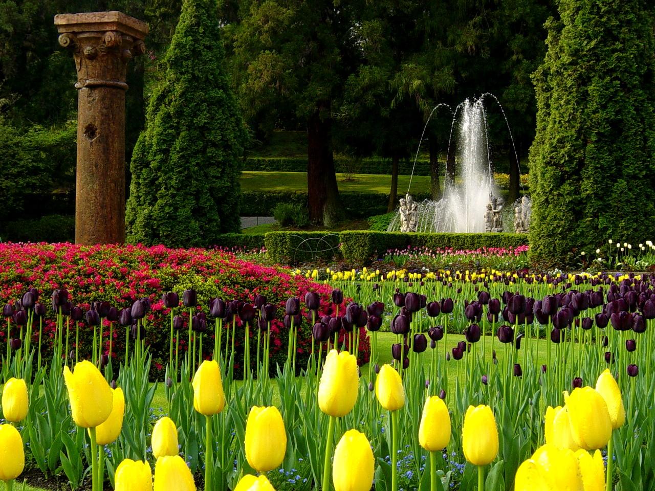 I giardini di villa taranto uno dei giardini botanici pi - Giardini bellissimi ...