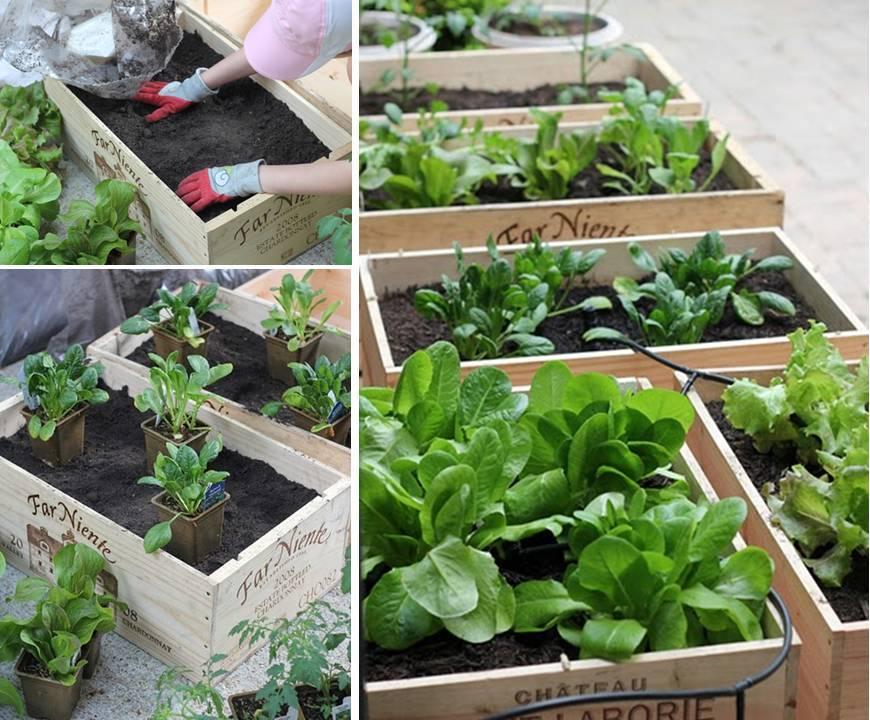 Cassette della frutta tante idee per riciclarle in modo - Porta piante aromatiche ...