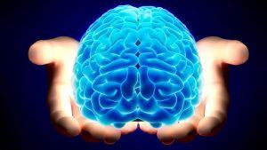 brain cervello