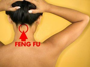 Feng Fu Reviews