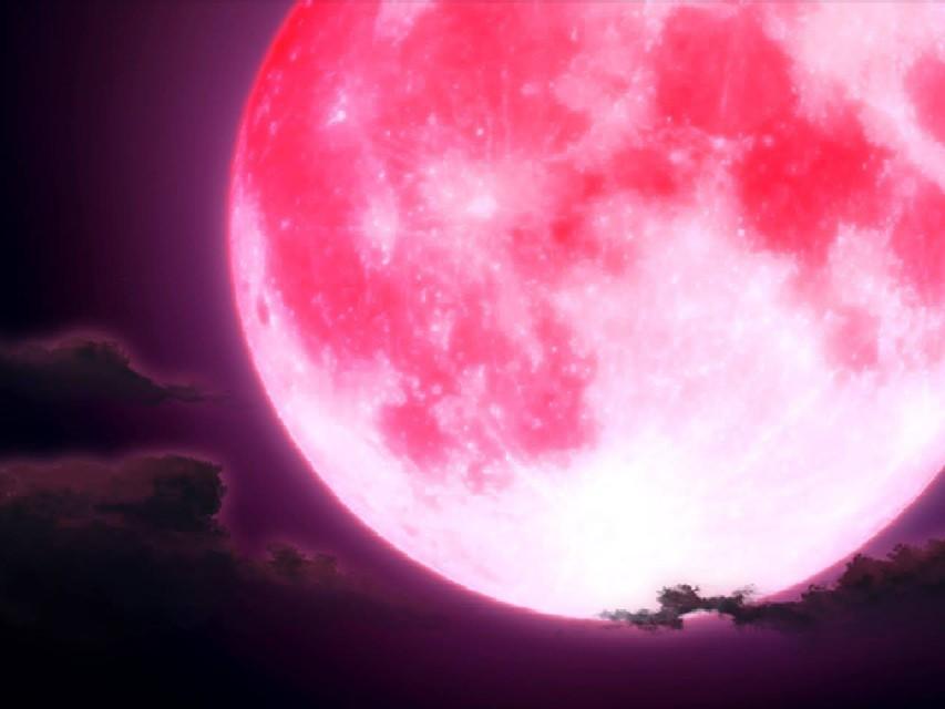 Stasera tutti con il naso all'insù: ecco come e perchè la Luna si tinge di  rosa