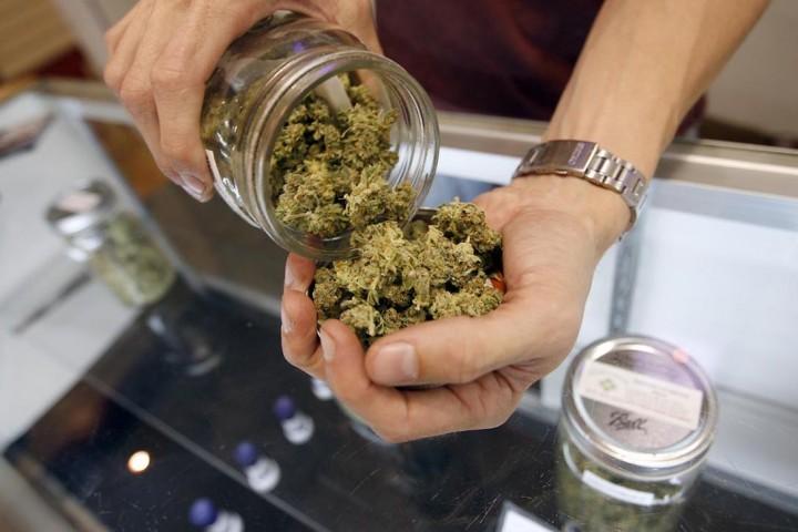 Epilessia: approvato in Europa il primo farmaco a base di cannabis