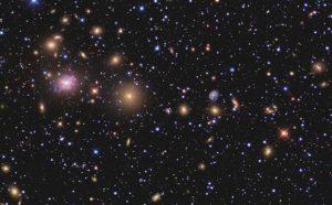 stelle ammasso