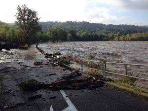 Alluvione Emilia fiume piena (10)