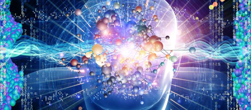 scienza human head