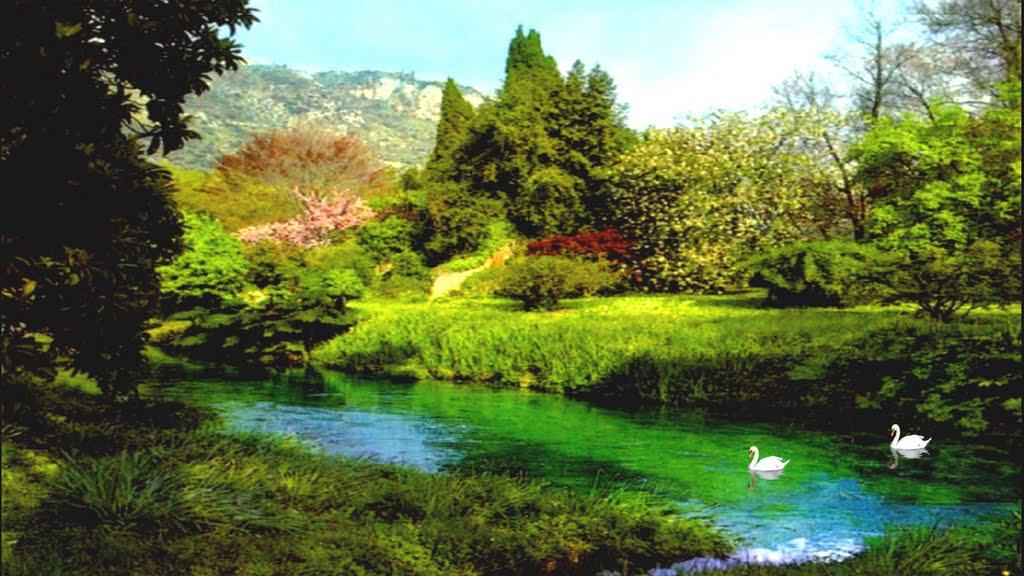 Alla scoperta del giardino di ninfa il parco pi bello d for Giardino di ninfa ristoranti
