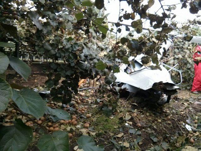 Arezzo, velivolo precipita in un bosco Ci sono due vittime, soccorsi all'opera