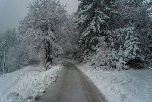 Neve Europa (9)
