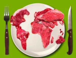 carne e ambiente