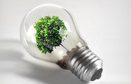 enea green