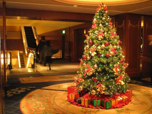 Albero Di Natale 8 Dicembre.Albero Di Natale Vero O Finto Ecco La Scelta Migliore Nel Rispetto