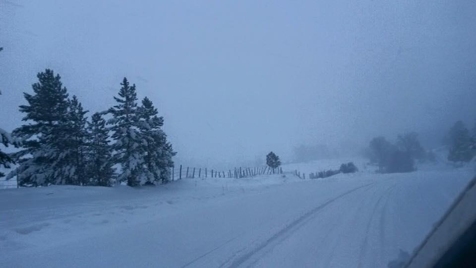 Nevicate eccezionali in calabria le foto da san giovanni for Meteo san giovanni in fiore