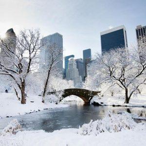 New York neve jonas blizzard gennaio 2016 (24)
