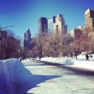 New York neve jonas blizzard gennaio 2016 (39)
