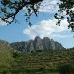 Le meraviglie del Parco Nazionale dell'Aspromonte  [FOTO]