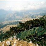 Il Parco Nazionale del Pollino tra flora, fauna e antiche tradizioni [FOTO]