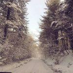 Gelo polare in Sila, già raggiunti i -11°C e domani farà ancora più freddo [DATI]