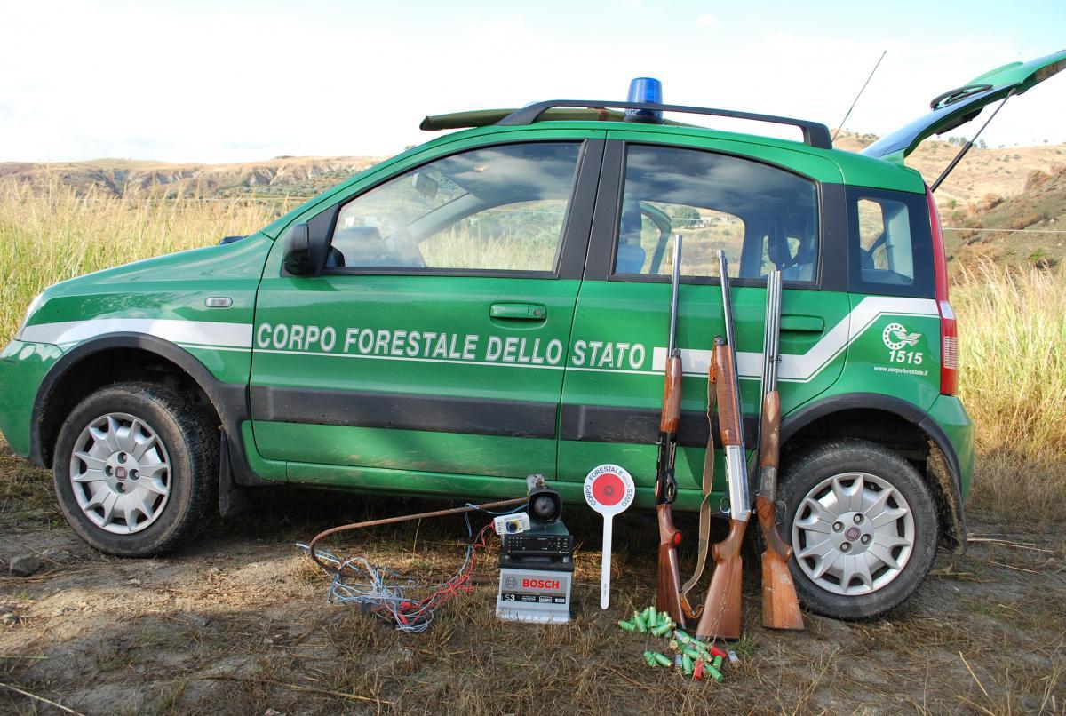 Vivaio Forestale Abruzzo : Vivai corpo forestale abruzzo italian guide