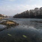 Siccità a Torino: le FOTO dei fiumi Po e Dora Riparia in secca