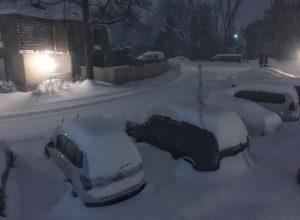 usa blizzard (10)