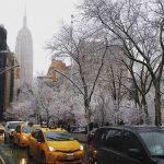 New York si risveglia sotto la neve, grande spettacolo [FOTO]