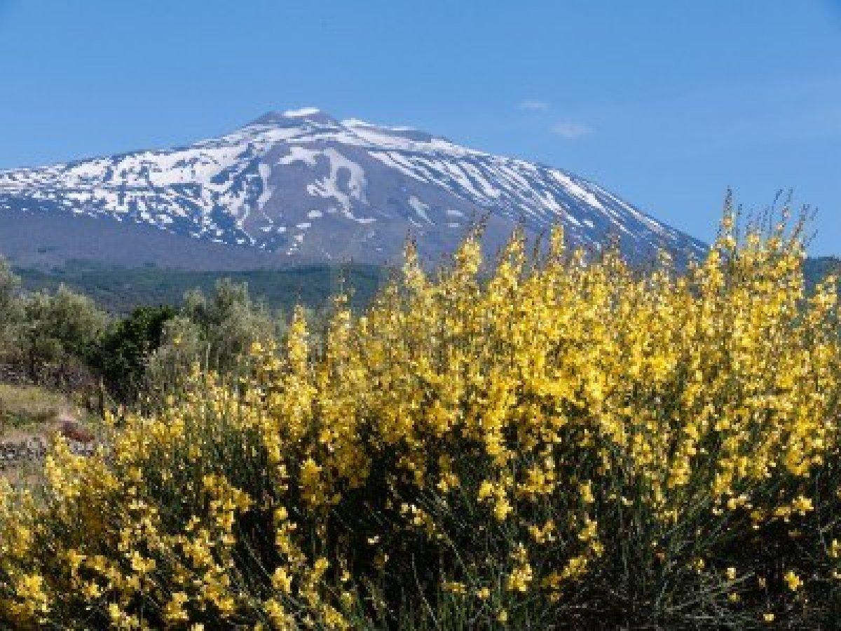 Parco dell etna un ambiente naturale unico al mondo for Mondo catania